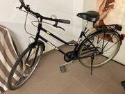 Wheeler Trekking-Damen-Fahrrad