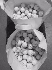 Wilson Golfbälle 100 STück