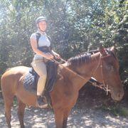 Reiterin sucht Pferd als RB