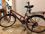 Jugend- und Damenmountainbike