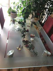 Massive Wunderschöne Glastisch- Esstisch mit