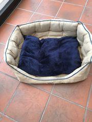 Hundebetten Größe M