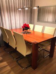 Qualität Designer Stühle Stuhl