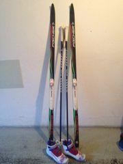 Damen - Langlauf Ski