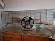 Terrarium für Nager Kleintiere