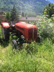 Suche günstigen Traktor