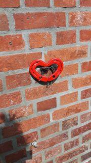 Schimmelsanierung Bautrocknung Wand trockenlegen