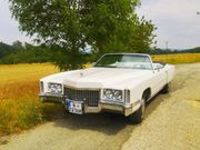 Perfekter Hochzeits-Oldtimer Traum-Cadillac in cremeweiß