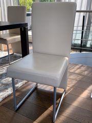 ROLF BENZ Esszimmer-Stühle Leder creme