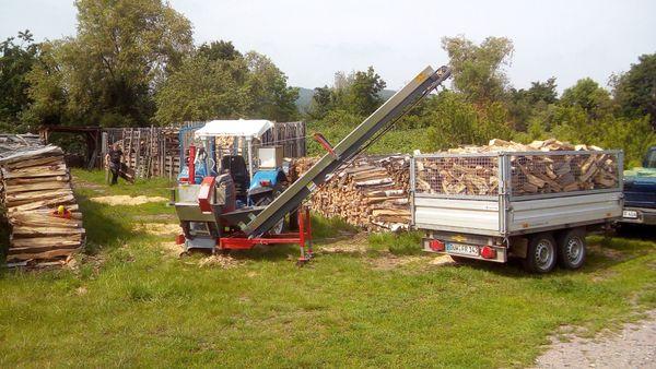 Brennholz Kaminholz aus dem Wachenheimer