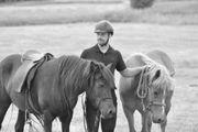 Reitunterricht auf Islandpferden