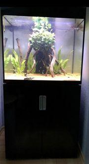 Aquarium Eheim Incpiria 200