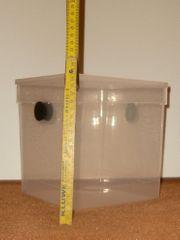 Mantis-Box Vogelspinnen -Box neu etrem