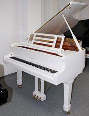 Flügel Klavier Feurich 178 Professional