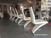 Rolf Benz 7800 Z Stühle