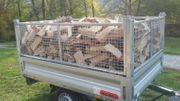 brennholz buche 2 jahre alt