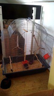 Vogelkäfig