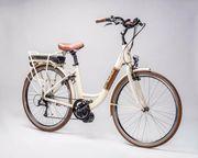 Schönes Retro City E-Bike starker