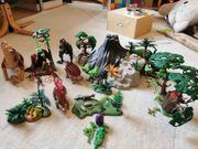 Playmobil Dinoset