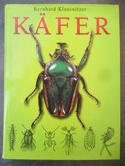Käfer Biologie