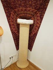 Kratzsäule Kratzbaum 160cm mit Wandbefestigung