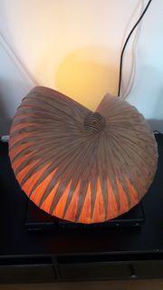 Muschelholzlampe