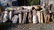 Brennholz Stammholz vorgespalten 5 m³