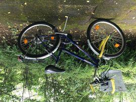 Damen-Fahrräder - Damenfahrrad 26 Zoll Switchback Bikes