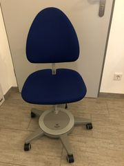 Moll Kinder Schreibtisch Stuhl