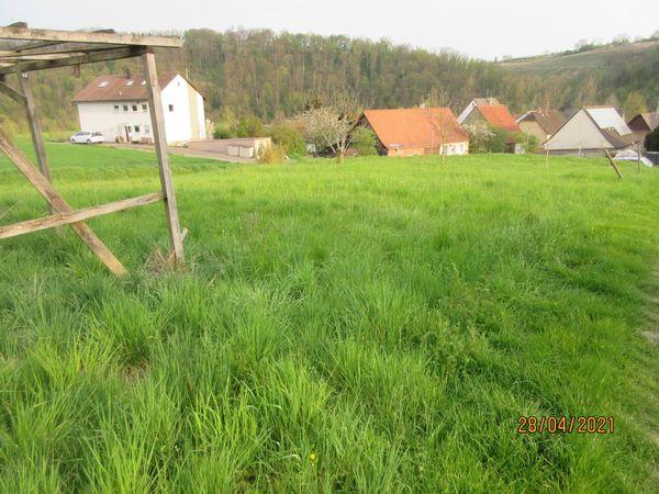 Krautgarten später Bauerwartungsland