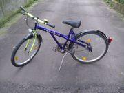 Pegasus Fahrrad 24-Zoll Jungenrad Mountainbike