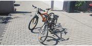 Mountainbikes -zwei Fahrräder zum Verkauf-