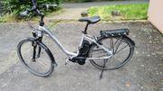 E-Bike Flyer Modell T8 1