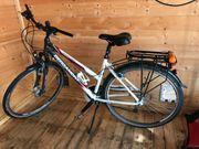 Bergamont Trekking Rad Damen Sponsor