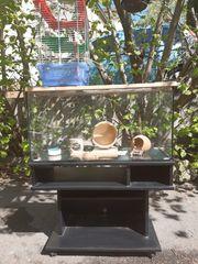 Aquarium mit Rollunterschrank für Kleintiere