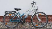 Kinder Citybike Stadtfahrrad Pegasus