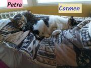 Carmen und Petra