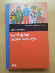 Jugendbuch Das Wildpferd unterm Kachelofen
