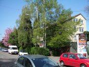 Fellbach Osten v Stuttgart Westen