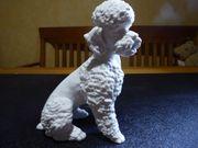 Kaiser Porzellan Figur biskuit Hund
