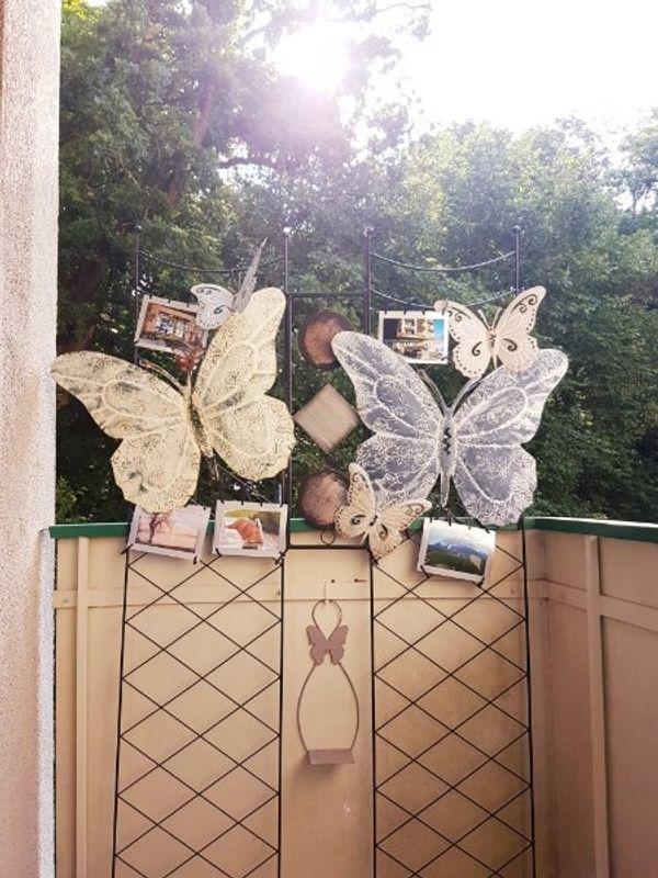 Sichtschutz Schmetterling
