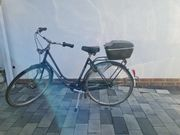 Gazelle Damenrad Hollandrad Fahrrad 51er