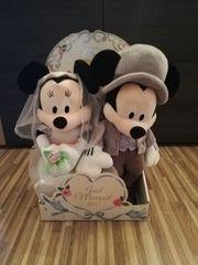 Hochzeitspaar mickey und minni mouse