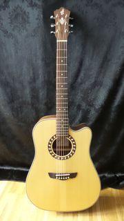 Gitarre Harley Benton Custom Line