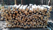 Verkaufe Brennholz Birke