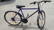 Jugend Fahrrad 28 Zoll