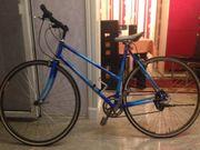 Damen Speening Fahrrad