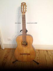 Gitarren-Unterricht ab sofort in der