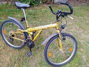 Mountain bike Pegasus 21-Gang
