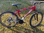 Jugend- Damen Mountain-Bike Focus 26
